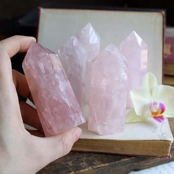 Rose Quartz Standing Polished Points