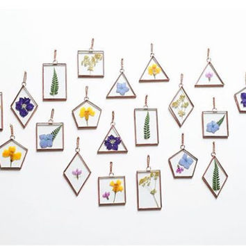 Real pressed flower glass wall art hanging frame