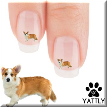 "Corgi ""Berrr its cold"" Nail Art Decals ( NOW 50% MORE FREE)"