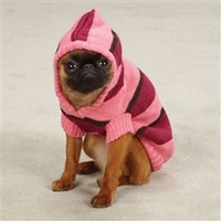 Zoey Striped Knit Hoodie in Pink
