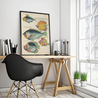 Fish Poster| Sea Life Art| Taxonomy Wall Art| Fishes Wall Art| Fishes Print| Animal Poster| Natural History| Vintage Zoology| HAP018