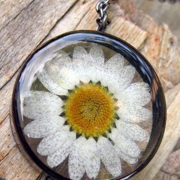 Daisy Resin Pendant Necklace - Real daisy encased in resin with open back copper bezel, Pressed Flower Jewelry - Resin Necklace