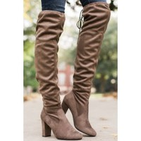 Great Strides Taupe Knee High Boots