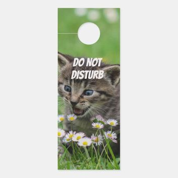 Cute Gray Kitten Door Hanger