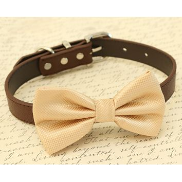 Champagne Dog Bow Tie attached to collar, Champagne wedding, Pet wedding