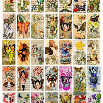 magical Fairy Garden 1 x 2 inch clip art digital download collage sheet printable for domino pendants magnets key chains jewelry