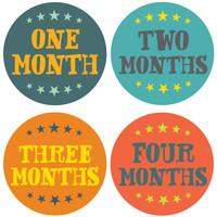 Little Champion Monthly Stickers