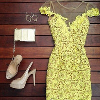 Sexy Perspective Hook Flower Lace Stitching Gauze Dress