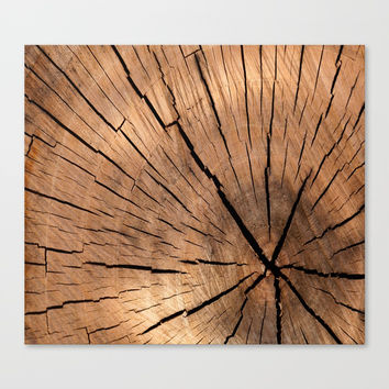 wood Canvas Print by abeerhassan