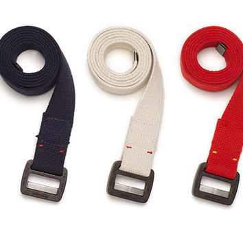 The Light Rigger's Belt