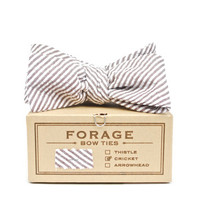 forage — summer stripes {bow tie} *two left