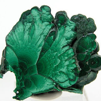 Polished Green Malachite Slice OOAK
