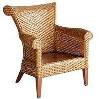 Pier 1 Imports - Clayton Armchair