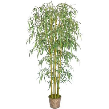 "72"" Tall Bamboo Tree with Pot"