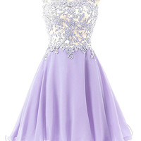 Elegant Lace Purple Homecoming Dress Off Shoulder Style