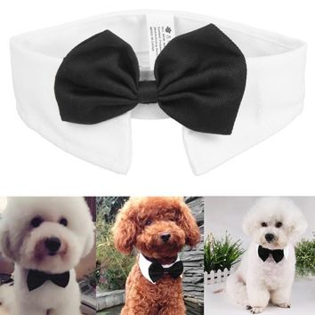 ASLT New Cut Adjustable Dog Cat Pet Lovely Adorable sweetie Grooming Tie Necktie Wear 8PCttern Clothing Products