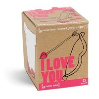 I Love You: Grow Me Seed Kit - Everything Needed To Grow Your Own 'Cupid' Sweet Peas - Ships 1/17