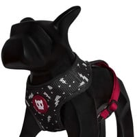 Flash | Mesh Plus Dog Harness