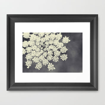 Black and White Queen Annes Lace Framed Art Print by Erin Johnson
