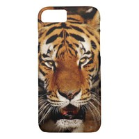 Stunning tiger photo iPhone 8/7 case