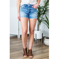 Vervet- High Rise Shorts