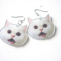 Cat Face Earrings : Funny Meme Jewelry White Photo