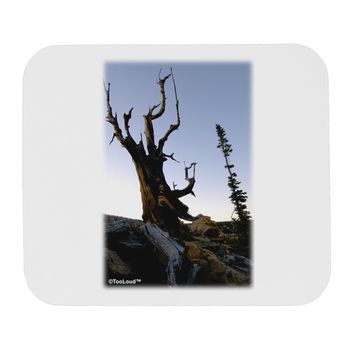 Colorado Mountain Scenery Mousepad by TooLoud