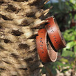 Handmade Couples Leather Bracelets - Cuff Bangles, Friendship bracelets, Wristbands, Personalized gifts, mens bracelets, anniversary gifts