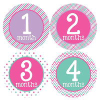 Baby Girl Monthly Baby Stickers Style #294