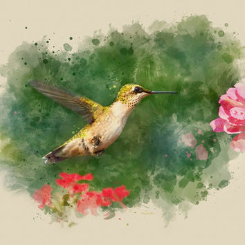 Hummingbird Watercolor Painting Art Print by Christina Rollo | Society6
