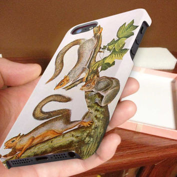 Woodland, Gray, squirrel 3D iPhone Cases for iPhone 4,iPhone 4s,iPhone 5,iPhone 5s,iPhone 5c,Samsung Galaxy s3,samsung Galaxy s4