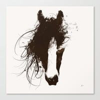 Colt Stretched Canvas by Allison Reich
