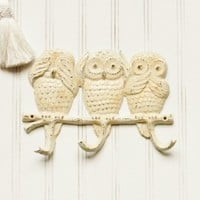 Three Owls Wall Hook - Choose your Color - Colorful Cast and Crew