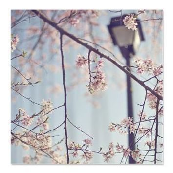 Walk with me - Cherry Blossom -Shower Curtain> Shower Curtains> cherokeerosemade