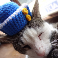 Sailor Cat Hat Costume - The Ahoy There Kitty Sailor's Hat - Cats and Small Dogs