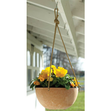 "garden accents: 10"" terra cotta napa hanging bowl Case of 5"