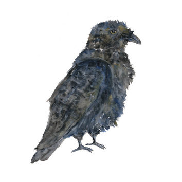 Watercolor painting, bird painting, crowart, bird art, crow painting, raven painting, Halloween decororation, gothic art, 8X10 print