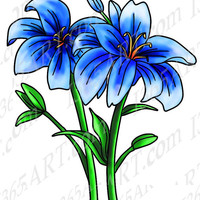 Beautiful Blue Flower Floral Clipart, Digital Stamp Illustration, Coloring Page Hand Drawn Line Art PNG JPEG Download