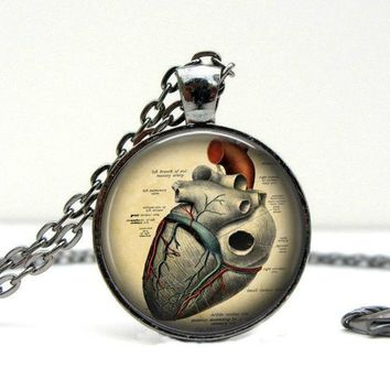 Anatomical Heart Necklace : Anatomy Jewelry. Anatomy Heart. Gunmetal Jewelry. Handmade