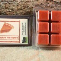 Pumpkin Pie Spice Wax Tarts, Fall Scented Wax Melts, Pumpkin Pie Spice Scented Candle Wax