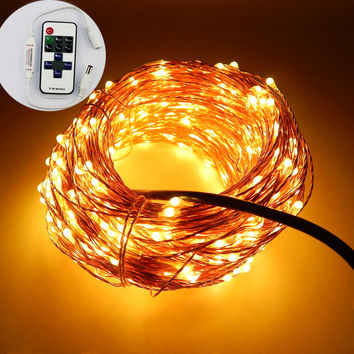 Factory Outlet 99Ft/30m 300 Leds Copper Wire Garden LED String Lights Starry Light Fairy lights+12V Power Adapter+Remote Control
