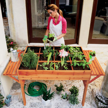 Precision Converters Gardening Plant Table at Brookstone—Buy Now!