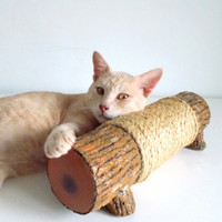 50% Meow Special Treats - Cat Scratching Log - Horizontal scratching post