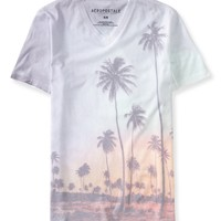 Tropical Vacay V-Neck Graphic T