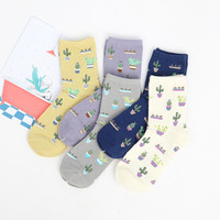 Foot 22-25cm Cacti Socks Fashion Daily Plant Ball Cactus Harajuku Lilac Lemon Fleshy Succulents Girlfriend Gift Present Garden