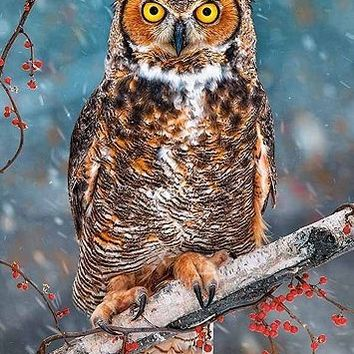 Tesco direct: Great Horned Owl - 500pc Puzzle