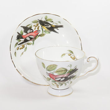 ROYAL TUSCAN Audubon Birds Crossbill Tea Cup and Saucer