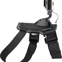 GoPro Fetch Camera Mount Dog Harness
