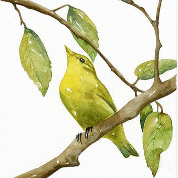 Bird Luì Green -  Art Print, Limited Edition - Original Watercolor Painting by Lorisworld