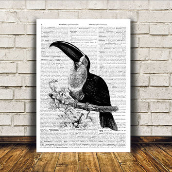 Bird art Toucan poster Modern decor Dictionary print RTA412
